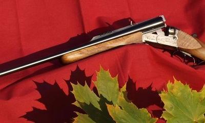 Broń myśliwska 67